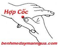 lieu-phap-bam-huyet-tri-man-ngua (3)