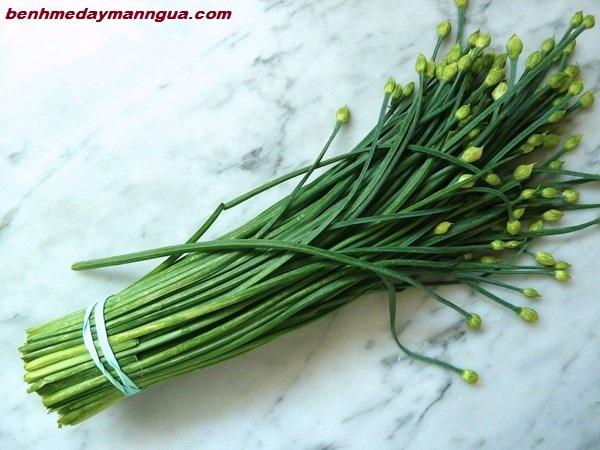 meo-chua-benh-me-day-bang-dan-gian-nhanh-chong (1)