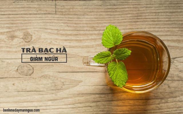 chữa ngứa da mặt bằng trà bạc hà