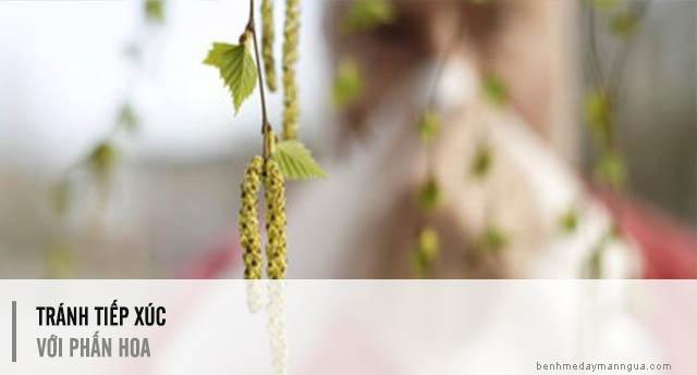 phòng ngừa dị ứng phấn hoa