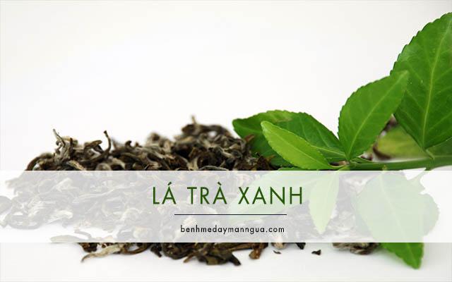 lá trà xanh chữa á sừng