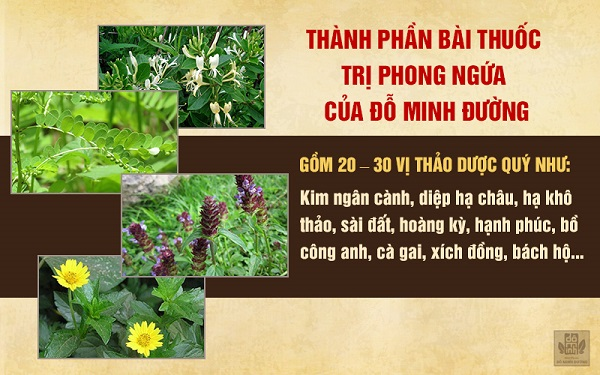 Thành phần bài thuốc nam trị phong ngứa, mề đay của Đỗ Minh Đường